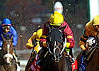 BC Sprint a Runaway Hit for Big Drama