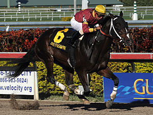 Big Drama Breaks Track Mark in Mr. Prospector