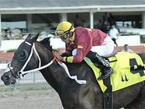Big Drama wins the 2010 Ponche Handicap.