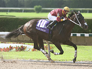 Big Drama Earns a Flashy Smile Sprint Victory