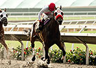 Big Macher Collects Grade I Bing Crosby Win