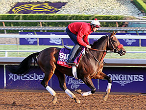 Big Macher - Breeders' Cup 2014