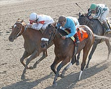 Bird Town Edges Lady Tak in Exciting Acorn