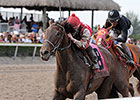 Birdatthewire Tops Familiar Rivals in GP Oaks