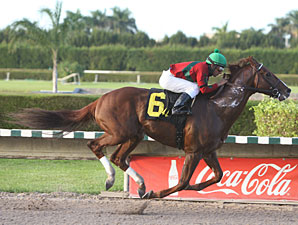 Birdrun Wins Florida Million Day Feature