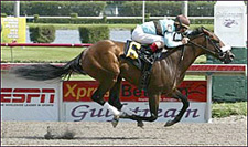 Zito Brigade Dominates Palm Meadows Work Tab