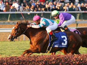Bit of Whimsy won the 2007 Mrs. Revere (gr. IIT) at Churchill Downs.