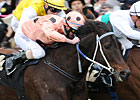 Black Caviar's First Mating