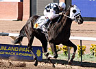 Black Hills Romps in Sunland Park Handicap