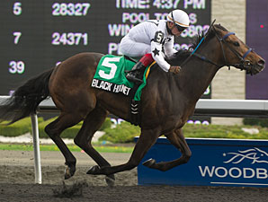 Black Hornet wins the 2013 Queenston Stakes.