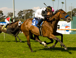 Black Mamba Recoils in Beverly Hills Handicap