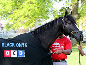 Black Onyx - Churchill Downs, May 1, 2013.