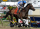 Blame Seeks Grade I Win in Stephen Foster