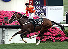 Blazing Speed Wins QE II Cup in Hong Kong