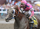 Blind Luck Retired; Booked to Bernardini