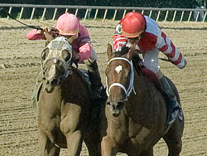 Blind Luck, Havre de Grace to Clash Again?