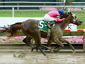 Blind Luck By a Nose in Delaware Oaks