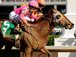 Blind Luck Towers Over Hollywood Oaks Field