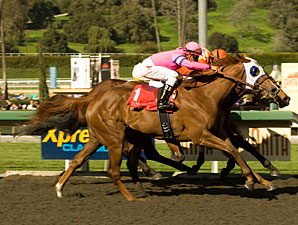 Blind Luck wins the 2010 Las Virgenes.