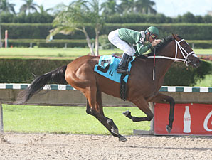 Blue Eyed Sweetie wins the 2010 Lindsay Frolic.