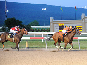 Blue Mountain Cat wins the 2013 Penn Dash.