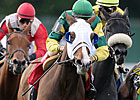 Boiling Springs: 8 Seek First Graded Stakes