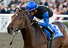 Bob Black Jack Makes Turf Debut in Citation