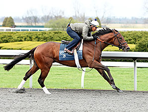 Bobby's Kitten - Workout, April 5, 2014 at Keeneland.