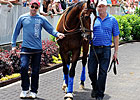 Zayat Looks To Cure Case Of Second-itis