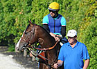 Classic-Placed Bodemeister Retired