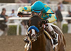 Bodemeister's Quick Breeze Far From Ordinary