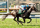 Bolo Thrives in Return to Turf at Santa Anita