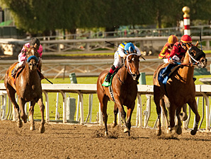 Book Review wins the La Brea Stakes.