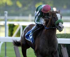 Borrego to Stud at Wintergreen in 2007