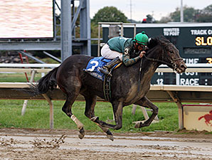 Bound wins the 2014 Plum Pretty Stakes.