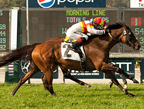 Bourbon Bay Out of Breeders' Cup Turf
