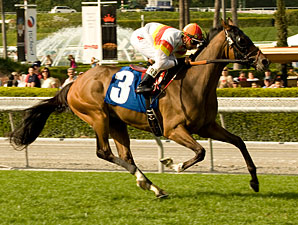 Northern Dancer Turf Ripe for the Taking