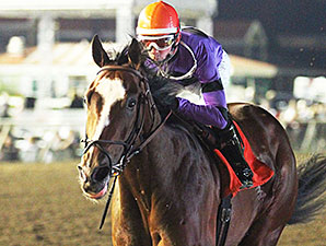Bourbon County wins the 2015 10,000 Lakes Stakes.