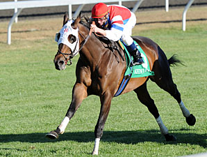 Brass Hat to be Paraded at Keeneland