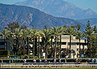 HRTV to Air Live Coverage of Breeders' Cup