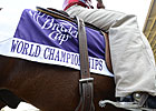 Breeders' Cup Reduces Entry Fees, Pays Travel