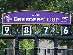 Breeders' Cup: Churchill, NYRA Still Options