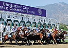 Nine 2012 Winners Return for Breeders' Cup