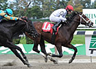 Graded Stakes Winner Brethren to Journeyman