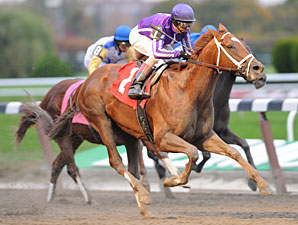 Bribon wins the 2010 Bold Ruler.