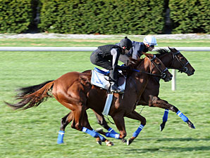Bridgeton (outside) and Kathmanblu work at Keeneland on October 30, 2010.