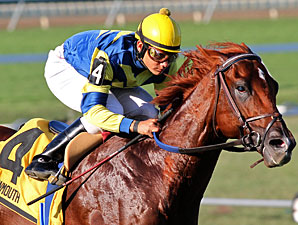 Grade III Winner Bridgetown Dies in New York