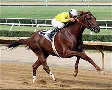Bright One Keeps Rolling in West Virginia Derby