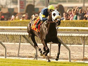 Bright Thought Sets Turf Mark in San Luis Rey