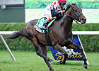 Brilliant Speed to Try Breeders' Cup Classic